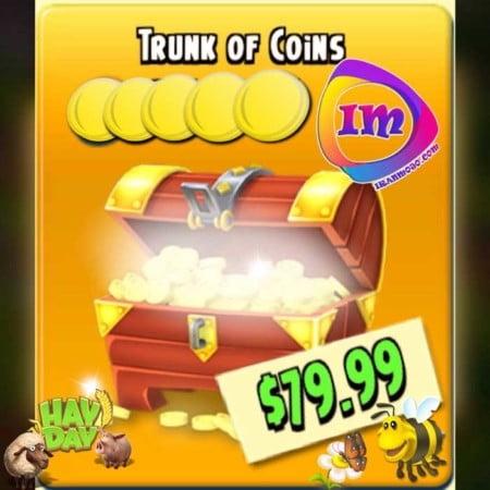 سکه هی دی ۸۰ دلاری